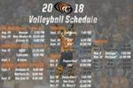 Volleyball Announces 2018 Schedule