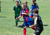 Summer Fun with the Tigers: Men's & Women's Youth Soccer Summer Camps