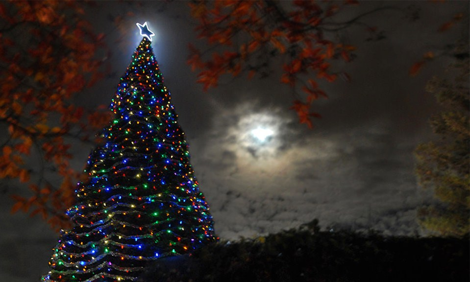 Hospice of San Joaquin Tree of Lights