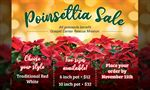 Gospel Center Rescue Mission to benefit from Poinsettia Sale
