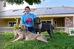 Shelter/Free Roaming Animal Bill of Rights for Stockton California